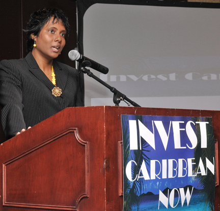 Invest Caribbean Now founder, Felicia Persaud